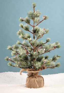 Pine Tree In Burlap - 24 inch