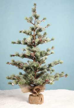 Pine Tree In Burlap - 36 inch