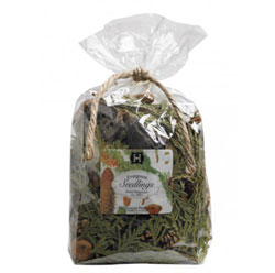 Evergreen Seedlings Bagged Potpourri