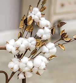 Cotton Pod Spray (26 inch)