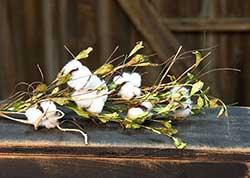 Wild Cotton 30 inch Spray