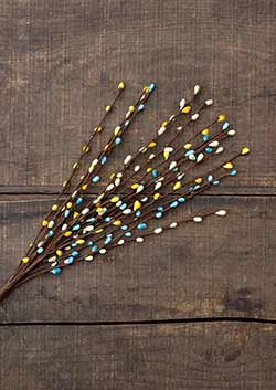 Blue & Yellow 18 inch Pip Berry Pick