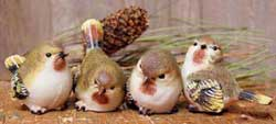 Finch Bird Figurines - Small (Set of 4)