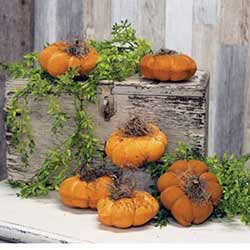 Grungy Mini Pumpkins (Set of 6)