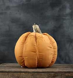 Stuffed Pumpkin with Stem