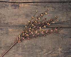 Rustic Wildflowers 12 inch Pip Berry Spray