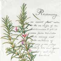 Rosemary Paper Luncheon Napkin