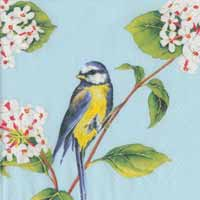 Early Bird Paper Luncheon Napkins