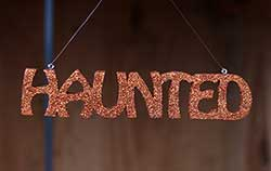 Halloween Word Ornament - Haunted