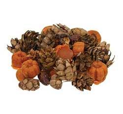 Pumpkin Spice Bowl Filler or Melts