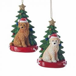 Labradoodle with Christmas Tree Ornament