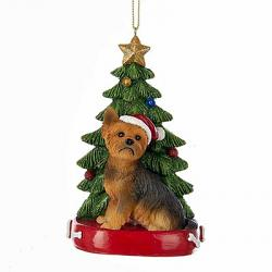 Yorkshire Terrier with Christmas Tree Ornament