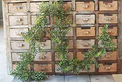New England Boxwood Garland