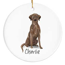 Labrador Personalized Ornament - Chocolate