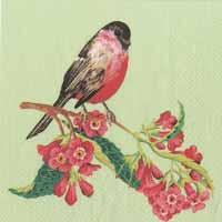 Songbird Paper Cocktail Napkin