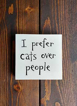 I Prefer Cats over People Shelf Sitter Sign (Custom Color)