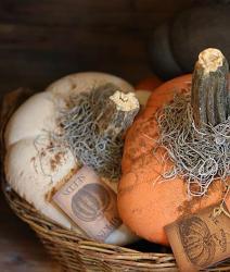 Primitive Stuffed Pumpkin - Cream