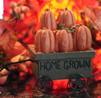 Home Grown Wagon