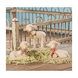 Precious Lambs (Set of 3)