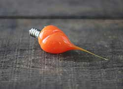 Orange Colored Silicone Light Bulb (Unscented)