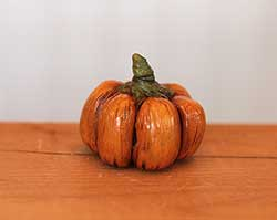 Miniature Pumpkin with Twisted Stem