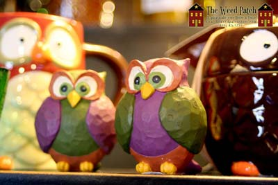Owls for Fall at The Weed Patch Country Store