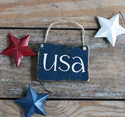 USA Small Wooden Sign - Blue