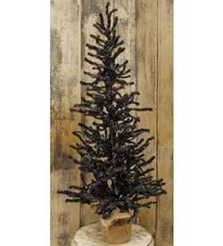 Black Pine Tree -  3 foot