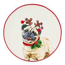 Cat & Dog Christmas Decor