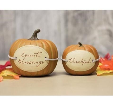 Blossom Bucket Thanksgiving Pumpkins