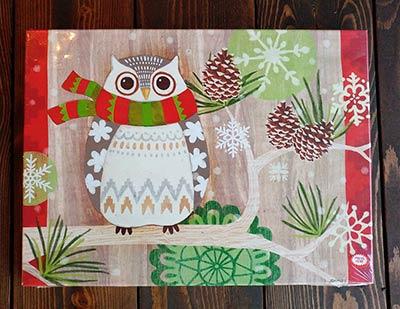 Christmas Owl Light Up Canvas Wall Decor