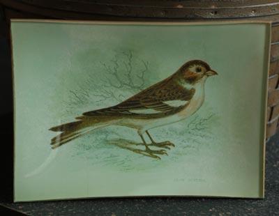 Vintage Bird Botanical Glass Tray
