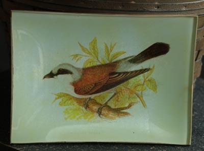 Vintage Bird Glass Tray