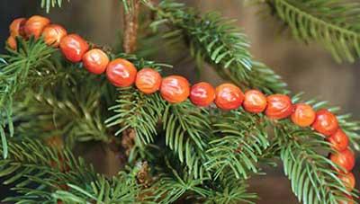 Orange Cranberry Garland