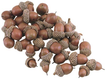 Faux Acorns (Bag of 40)