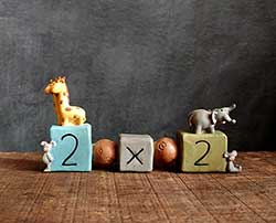 Two by Two Animals Bead Block