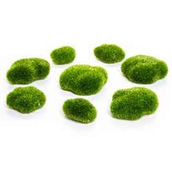 Mossy Rocks (Set of 8)