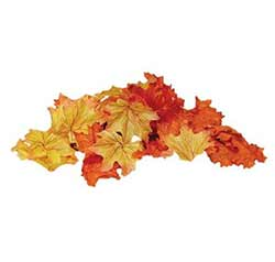 Fall Scatter Leaves
