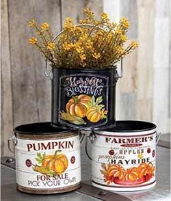 Harvest Buckets (Set of 3)