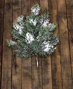 Snowy Cedar Spray - 18 inch