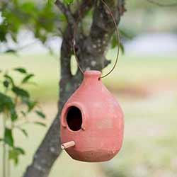 Terra Cotta Hanging Birdhouse