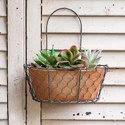 Chicken Wire Wall Planter - Oval