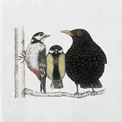 Birds Conversation Luncheon Paper Napkins