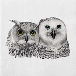 2 Owls Luncheon Paper Napkins