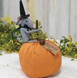 Harvest Mouse on Pumpkin