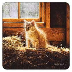 Barn Kitten Coaster