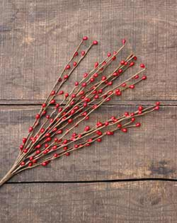 Red 18 inch Pip Berry Pick