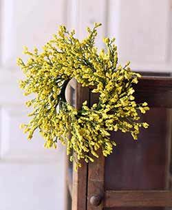 Yellow Array Astilbe 3 inch Candle Ring