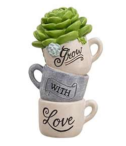 Grow with Love with Succulent
