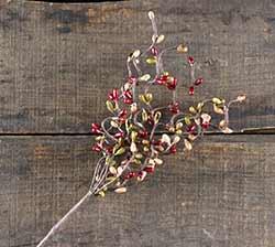 Vineyard 12 inch Pip Berry Spray